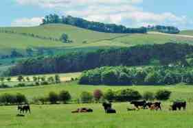 We have a range of farming enterprises running.
