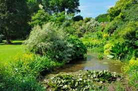 Ponds and Rockeries in the Mindrum Gardents