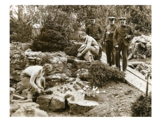 An image of what may be the same rock garden at chelsea in 1935.