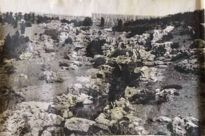 rockgarden 1955 a